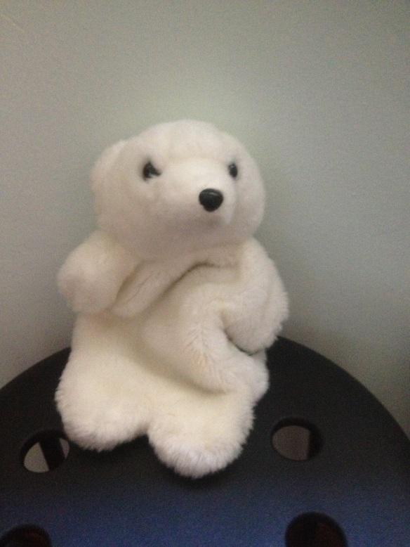 grandaunt bear